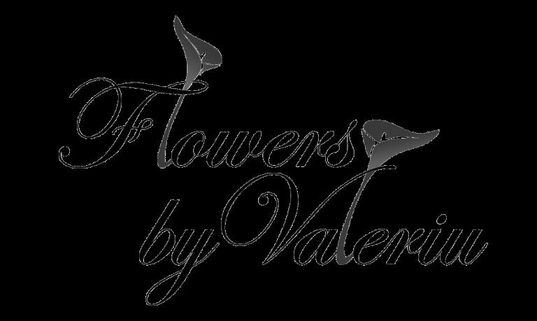 Parteneri-Clienti-Fbv_logo
